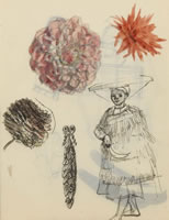 Study of  chrysanthemum heads with a...