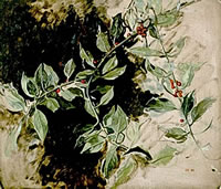 A sprig of holly, 1990